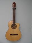 Guitarra Parquer