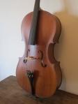 violoncello-custom