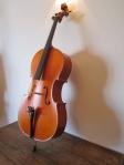 violoncello majestic