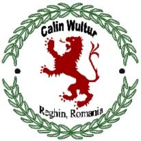 Logo Calin Wultur